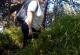 Polšnik - Zasavsko hribovje